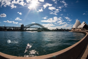 australia-04
