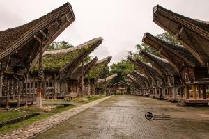 indonesia-005