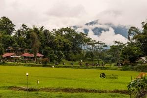 indonesia-012
