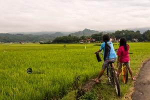 indonesia-061