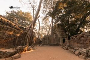 91-cambogia-2019-020