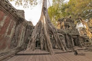 92-cambogia-2019-011