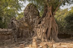 991-cambogia-2019-124-CO