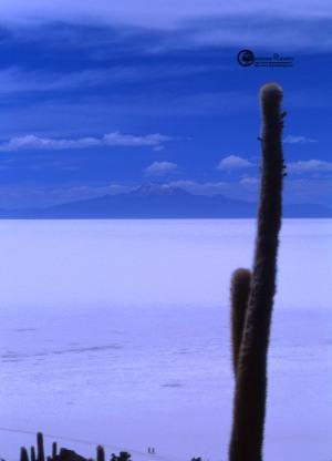 Bolivia: Salar de Uyuni 2001