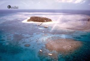 Australia: Green island 1996