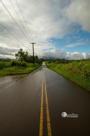 hawaii-2018-106