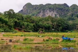 indonesia-015