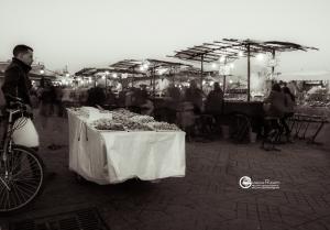 marrakech-1213-076