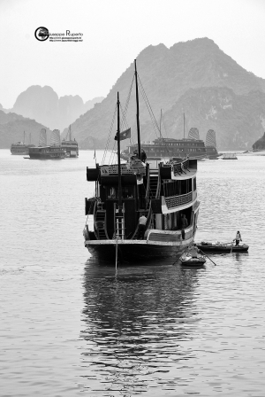 Vietnam176